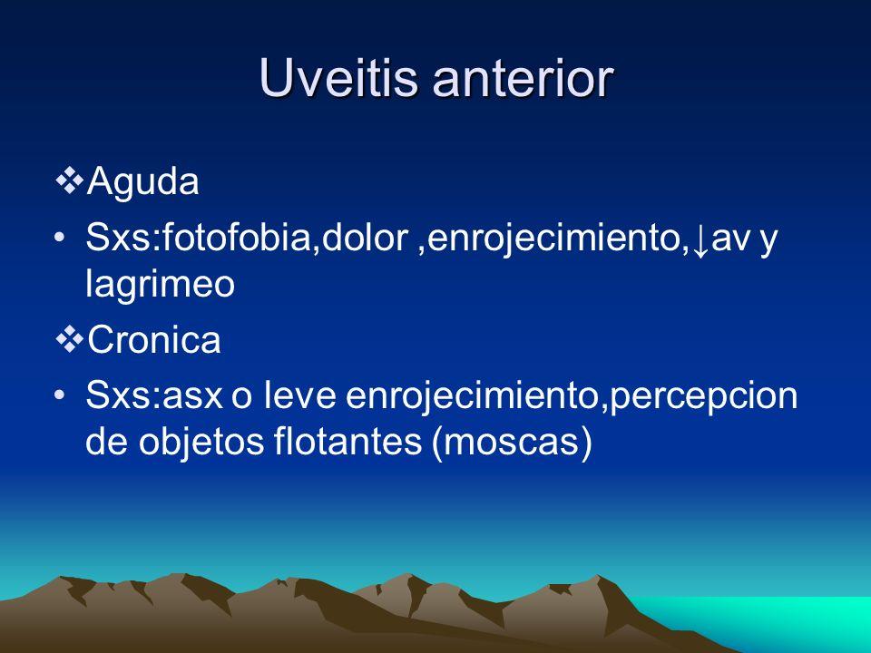 Uveitis anterior Aguda Sxs:fotofobia,dolor,enrojecimiento,av y lagrimeo Cronica Sxs:asx o leve enrojecimiento,percepcion de objetos flotantes (moscas)
