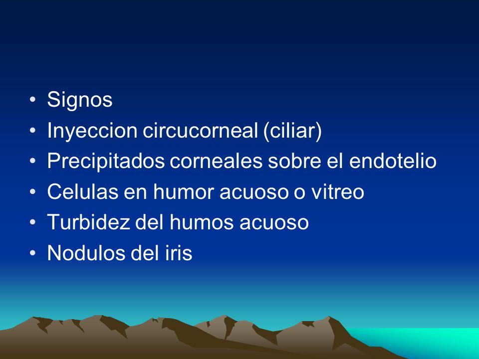 Signos Inyeccion circucorneal (ciliar) Precipitados corneales sobre el endotelio Celulas en humor acuoso o vitreo Turbidez del humos acuoso Nodulos de