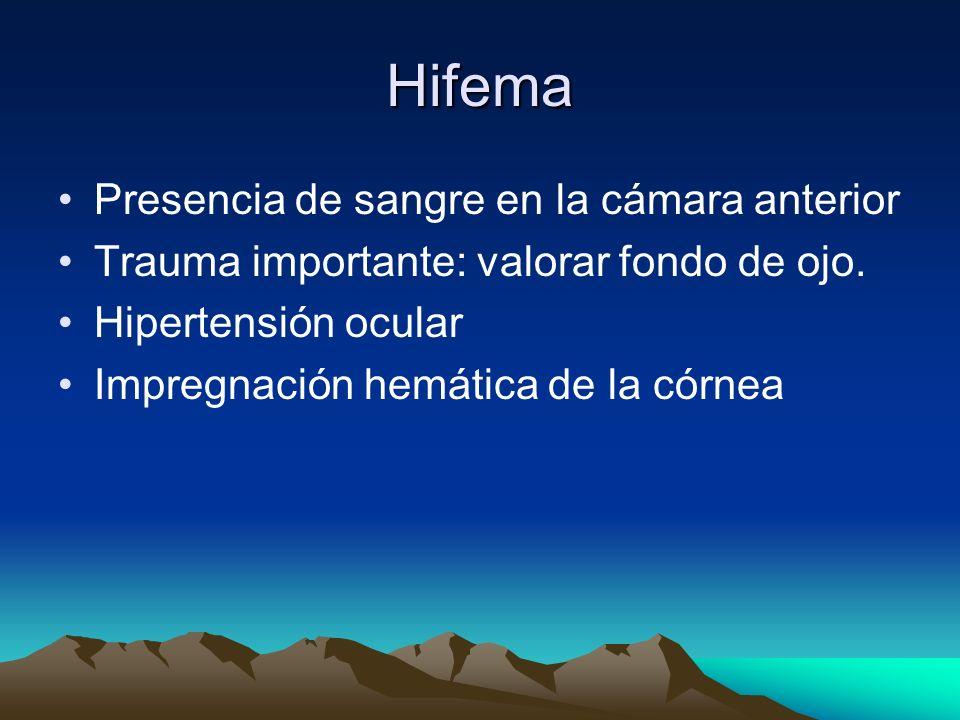 Hifema Presencia de sangre en la cámara anterior Trauma importante: valorar fondo de ojo. Hipertensión ocular Impregnación hemática de la córnea