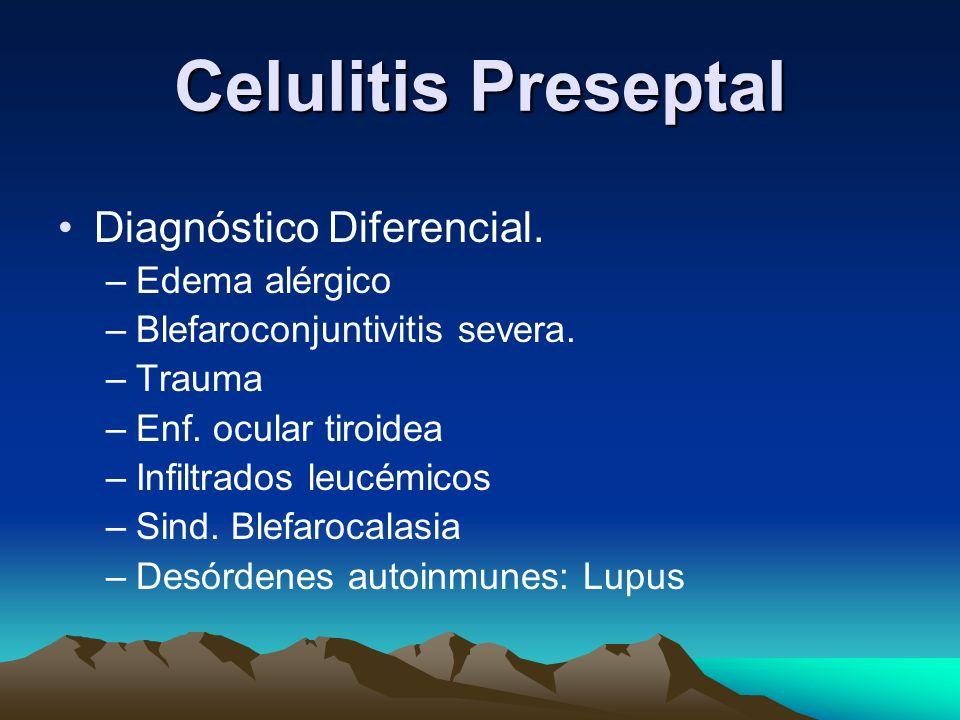 Celulitis Preseptal Diagnóstico Diferencial. –Edema alérgico –Blefaroconjuntivitis severa. –Trauma –Enf. ocular tiroidea –Infiltrados leucémicos –Sind