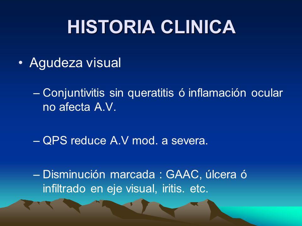 HISTORIA CLINICA Agudeza visual –Conjuntivitis sin queratitis ó inflamación ocular no afecta A.V. –QPS reduce A.V mod. a severa. –Disminución marcada