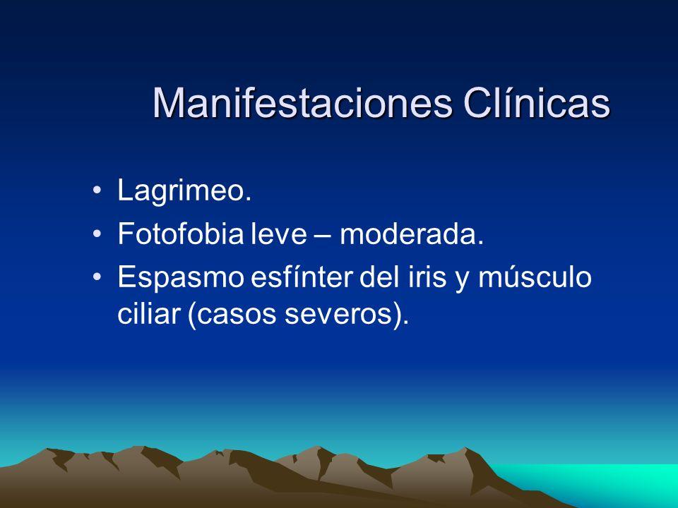 Manifestaciones Clínicas Lagrimeo. Fotofobia leve – moderada. Espasmo esfínter del iris y músculo ciliar (casos severos).