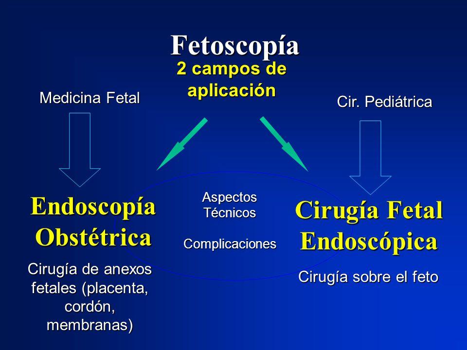 Aspectos Técnicos Complicaciones Fetoscopía 2 campos de aplicación Cirugía de anexos fetales (placenta, cordón, membranas) Cirugía sobre el feto Endos