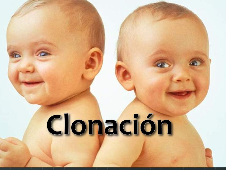 Que es la clonación.