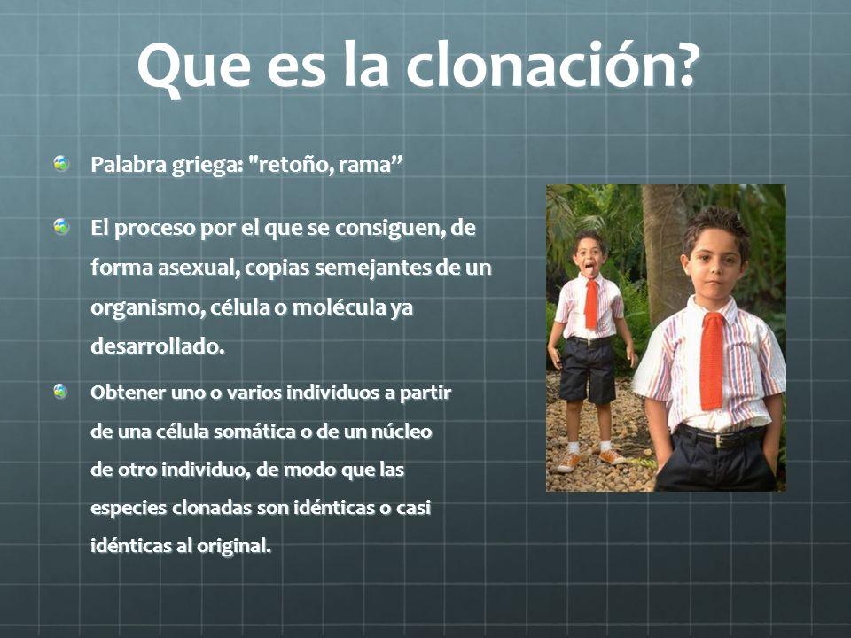 Que es la clonación? Palabra griega:
