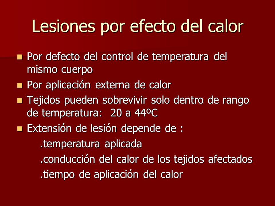 Lesiones por efecto del calor Por defecto del control de temperatura del mismo cuerpo Por defecto del control de temperatura del mismo cuerpo Por apli