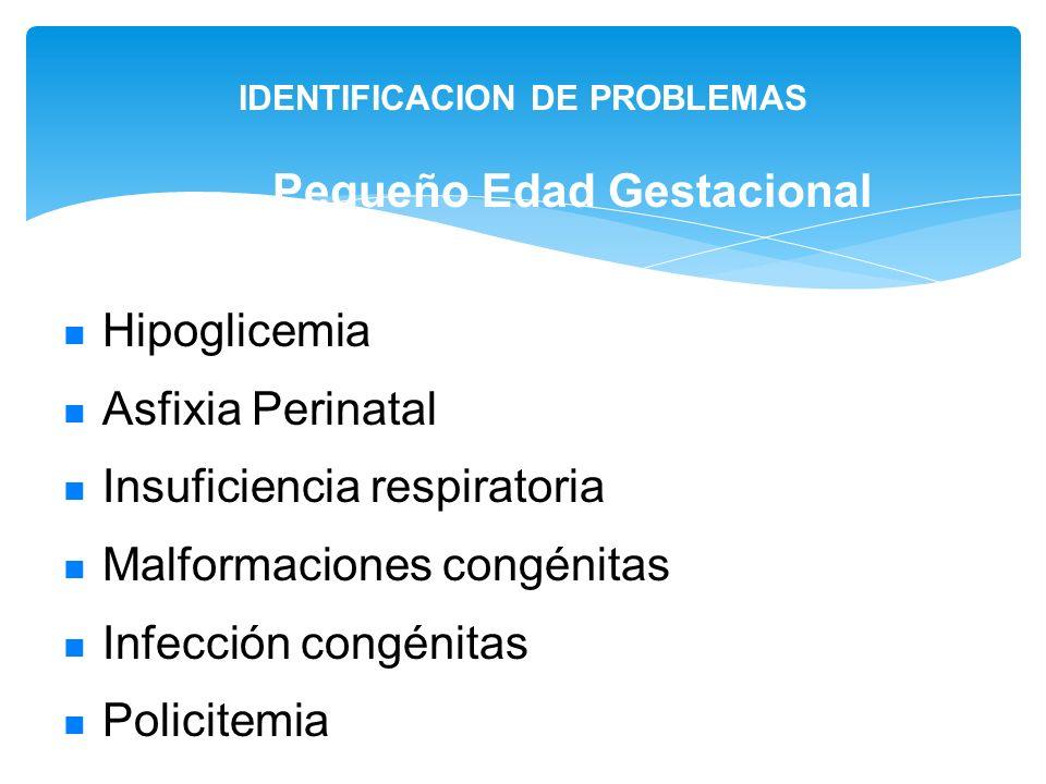 IDENTIFICACION DE PROBLEMAS Pequeño Edad Gestacional Hipoglicemia Asfixia Perinatal Insuficiencia respiratoria Malformaciones congénitas Infección con