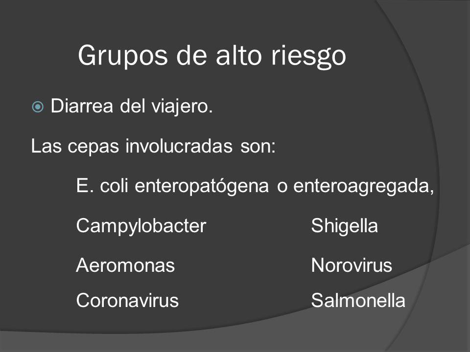 Grupos de alto riesgo Diarrea del viajero. Las cepas involucradas son: E. coli enteropatógena o enteroagregada, CampylobacterShigella AeromonasNorovir