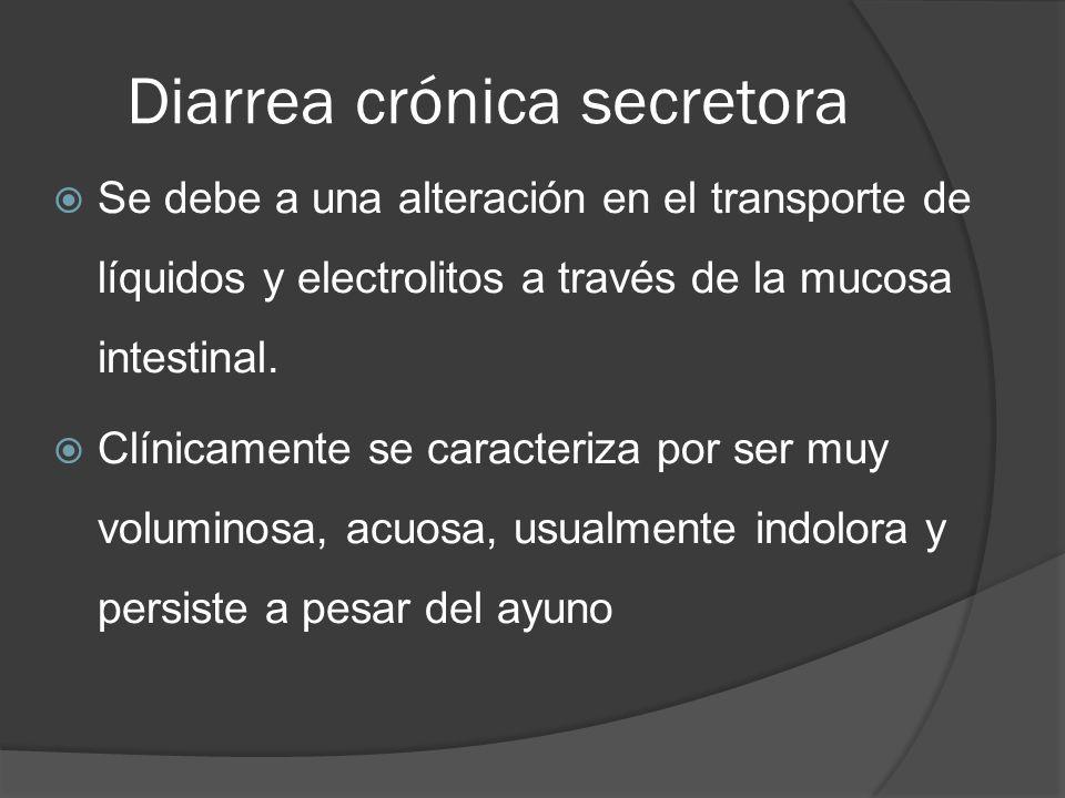 Diarrea crónica secretora Se debe a una alteración en el transporte de líquidos y electrolitos a través de la mucosa intestinal. Clínicamente se carac