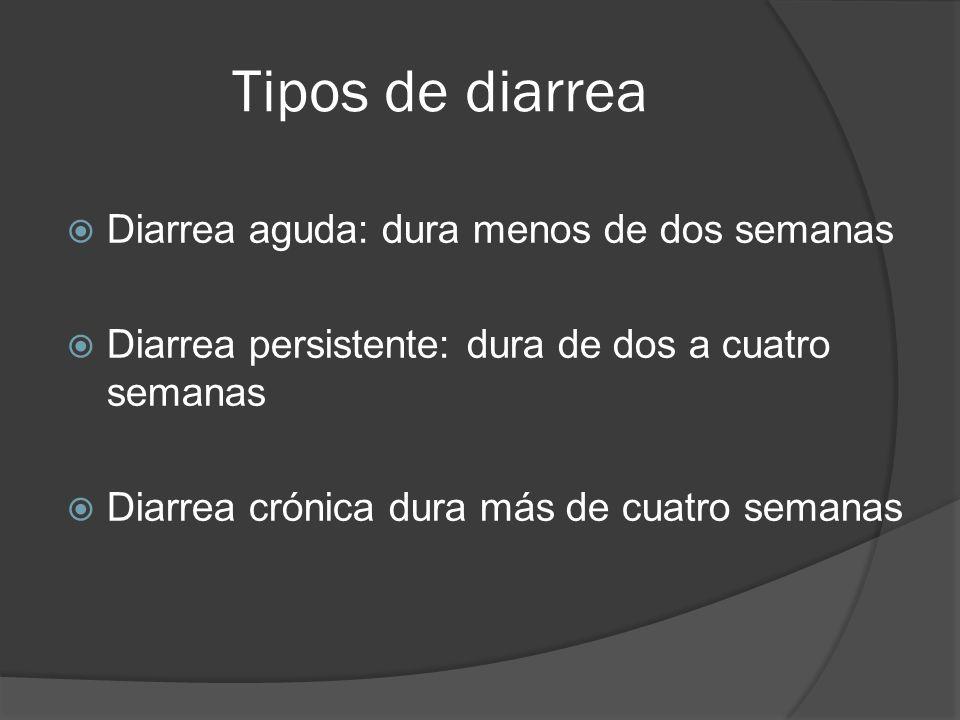 Tipos de diarrea Diarrea aguda: dura menos de dos semanas Diarrea persistente: dura de dos a cuatro semanas Diarrea crónica dura más de cuatro semanas