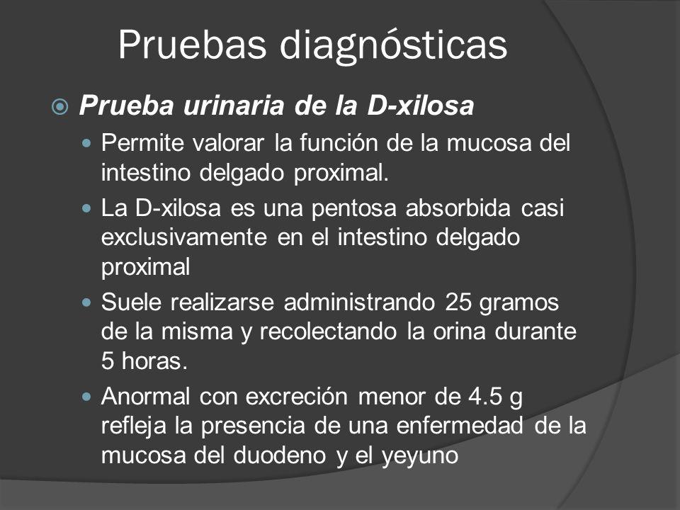 Pruebas diagnósticas Prueba urinaria de la D-xilosa Permite valorar la función de la mucosa del intestino delgado proximal. La D-xilosa es una pentosa