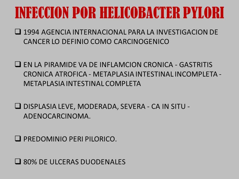 INFECCION POR HELICOBACTER PYLORI 1994 AGENCIA INTERNACIONAL PARA LA INVESTIGACION DE CANCER LO DEFINIO COMO CARCINOGENICO EN LA PIRAMIDE VA DE INFLAMCION CRONICA - GASTRITIS CRONICA ATROFICA - METAPLASIA INTESTINAL INCOMPLETA - METAPLASIA INTESTINAL COMPLETA DISPLASIA LEVE, MODERADA, SEVERA - CA IN SITU - ADENOCARCINOMA.