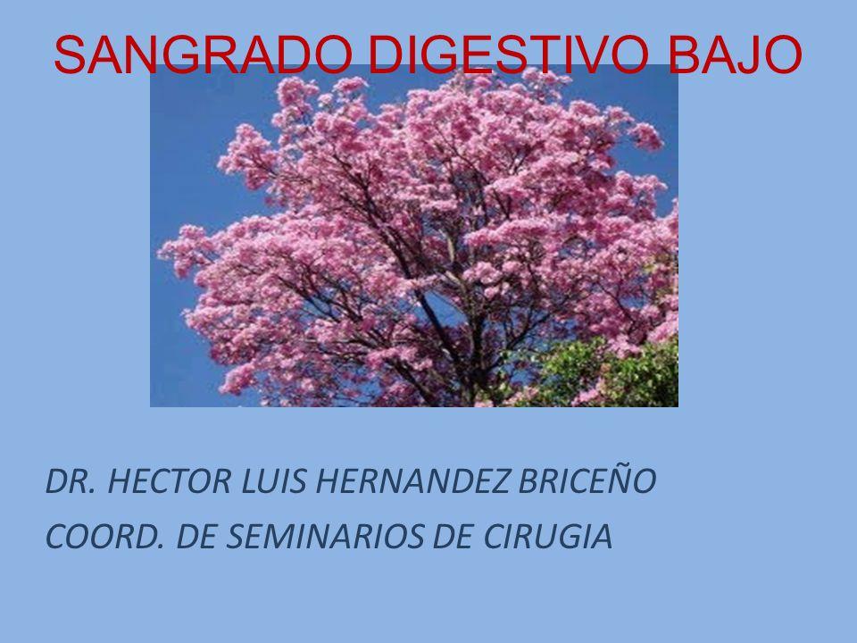 SANGRADO DIGESTIVO BAJO DR. HECTOR LUIS HERNANDEZ BRICEÑO COORD. DE SEMINARIOS DE CIRUGIA