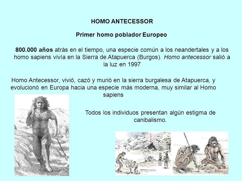 800.000 años atrás en el tiempo, una especie común a los neandertales y a los homo sapiens vivía en la Sierra de Atapuerca (Burgos). Homo antecessor s