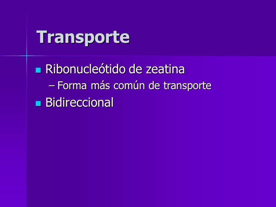 Ribonucleótido de zeatina Ribonucleótido de zeatina –Forma más común de transporte Bidireccional Bidireccional Transporte