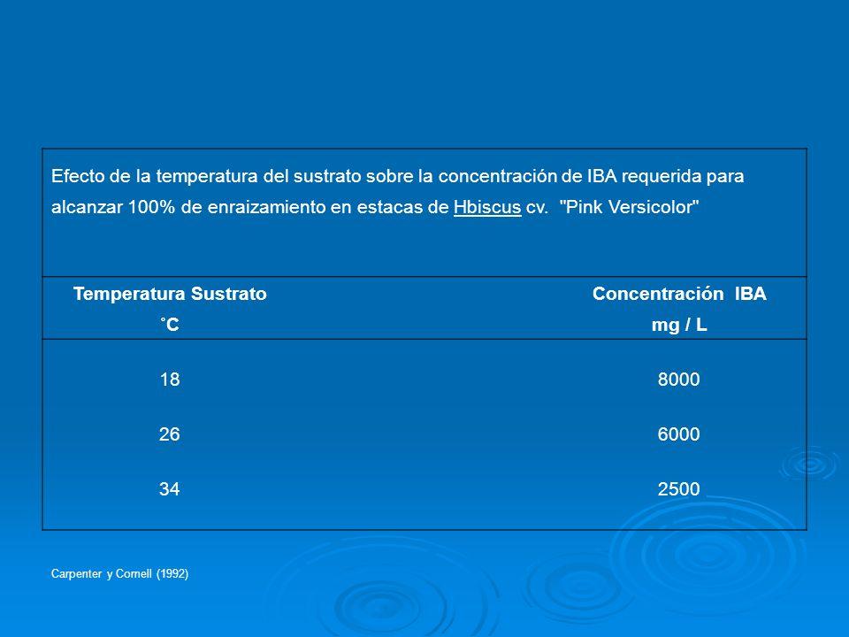 Efecto de la temperatura del sustrato sobre la concentración de IBA requerida para alcanzar 100% de enraizamiento en estacas de Hbiscus cv.