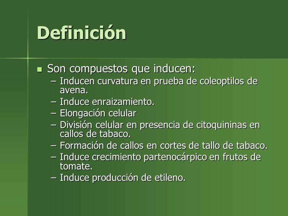 Definición Son compuestos que inducen: Son compuestos que inducen: –Inducen curvatura en prueba de coleoptilos de avena. –Induce enraizamiento. –Elong