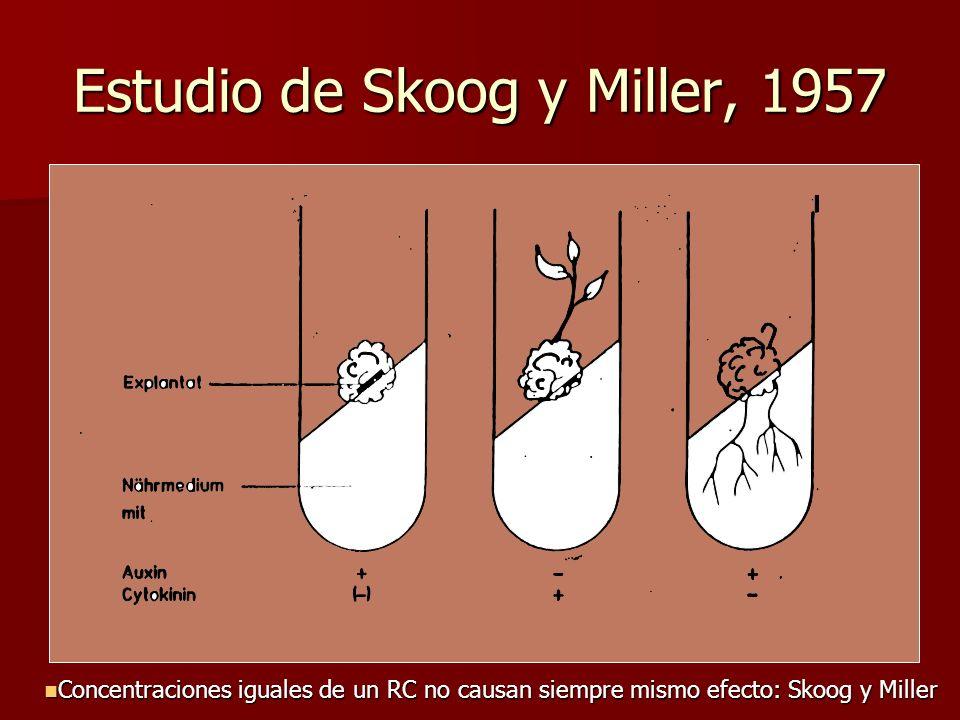 Estudio de Skoog y Miller, 1957 Concentraciones iguales de un RC no causan siempre mismo efecto: Skoog y Miller Concentraciones iguales de un RC no ca