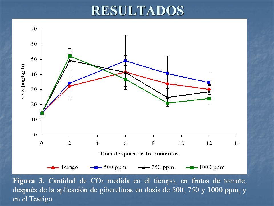 RESULTADOS Figura 3. Cantidad de CO 2 medida en el tiempo, en frutos de tomate, después de la aplicación de giberelinas en dosis de 500, 750 y 1000 pp