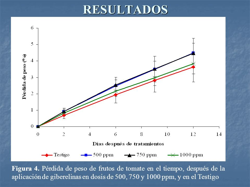 RESULTADOS Figura 4. Pérdida de peso de frutos de tomate en el tiempo, después de la aplicación de giberelinas en dosis de 500, 750 y 1000 ppm, y en e