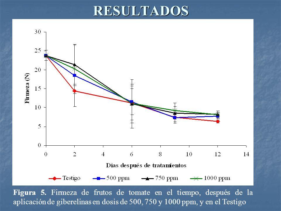 RESULTADOS Figura 5. Firmeza de frutos de tomate en el tiempo, después de la aplicación de giberelinas en dosis de 500, 750 y 1000 ppm, y en el Testig