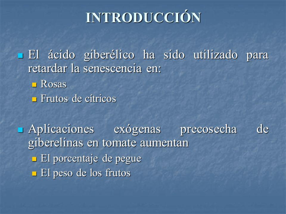 INTRODUCCIÓN El ácido giberélico ha sido utilizado para retardar la senescencia en: El ácido giberélico ha sido utilizado para retardar la senescencia