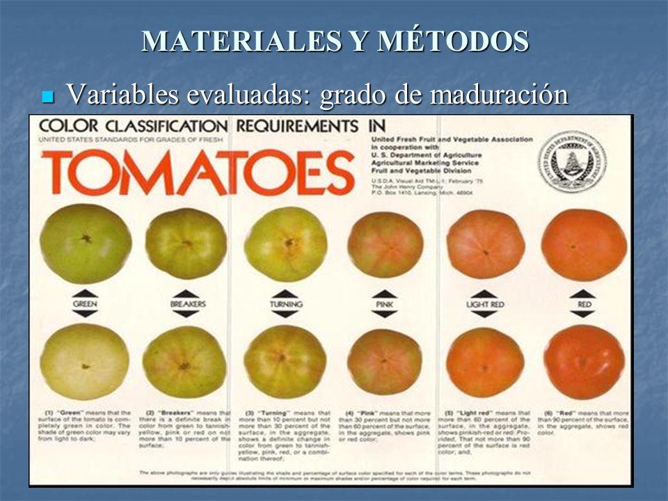 MATERIALES Y MÉTODOS Variables evaluadas: cambio de color Variables evaluadas: cambio de color Colorímetro (valores de a y b) Colorímetro (valores de a y b)