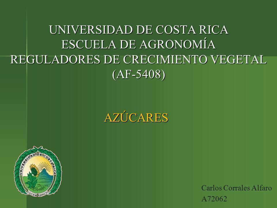 UNIVERSIDAD DE COSTA RICA ESCUELA DE AGRONOMÍA REGULADORES DE CRECIMIENTO VEGETAL (AF-5408) AZÚCARES Carlos Corrales Alfaro A72062