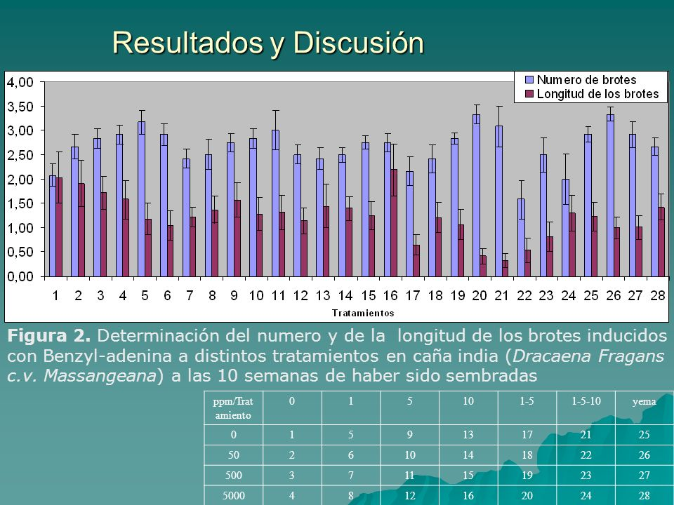 Resultados y Discusión Figura 2. Determinación del numero y de la longitud de los brotes inducidos con Benzyl-adenina a distintos tratamientos en caña