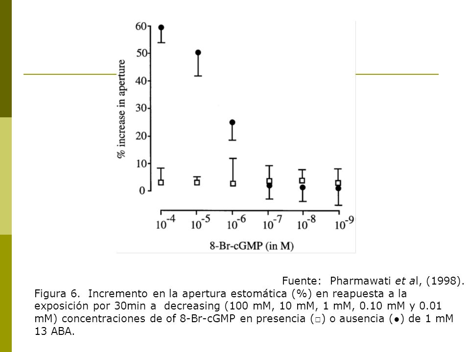 Fuente: Pharmawati et al, (1998). Figura 6. Incremento en la apertura estomática (%) en reapuesta a la exposición por 30min a decreasing (100 mM, 10 m