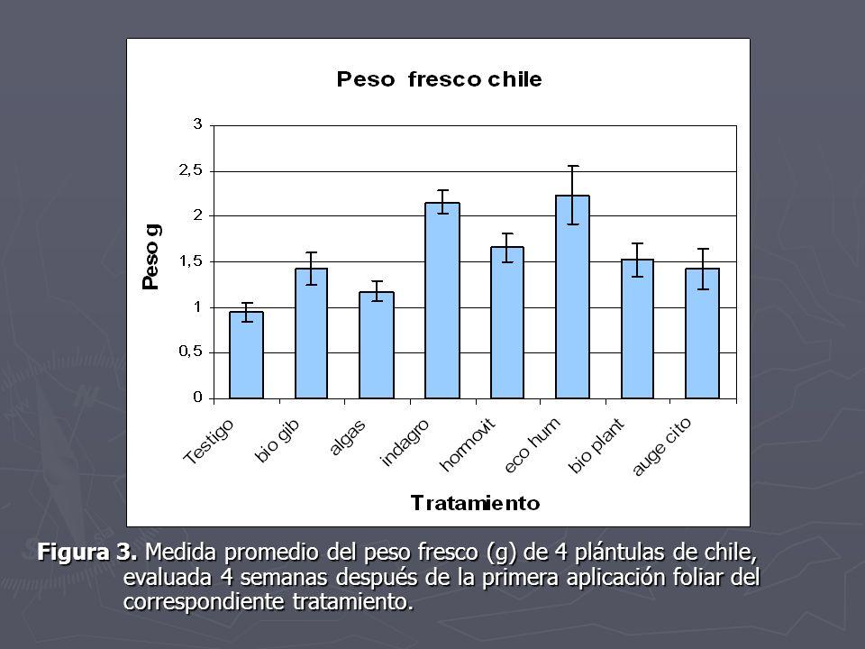 Figura 3. Medida promedio del peso fresco (g) de 4 plántulas de chile, evaluada 4 semanas después de la primera aplicación foliar del correspondiente