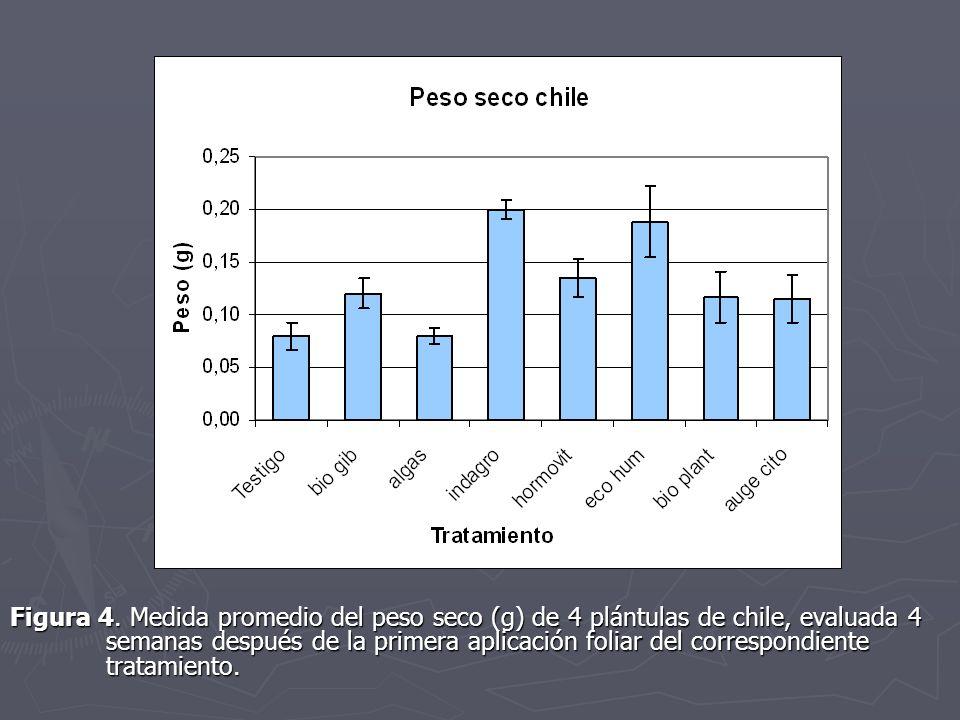 Figura 4. Medida promedio del peso seco (g) de 4 plántulas de chile, evaluada 4 semanas después de la primera aplicación foliar del correspondiente tr