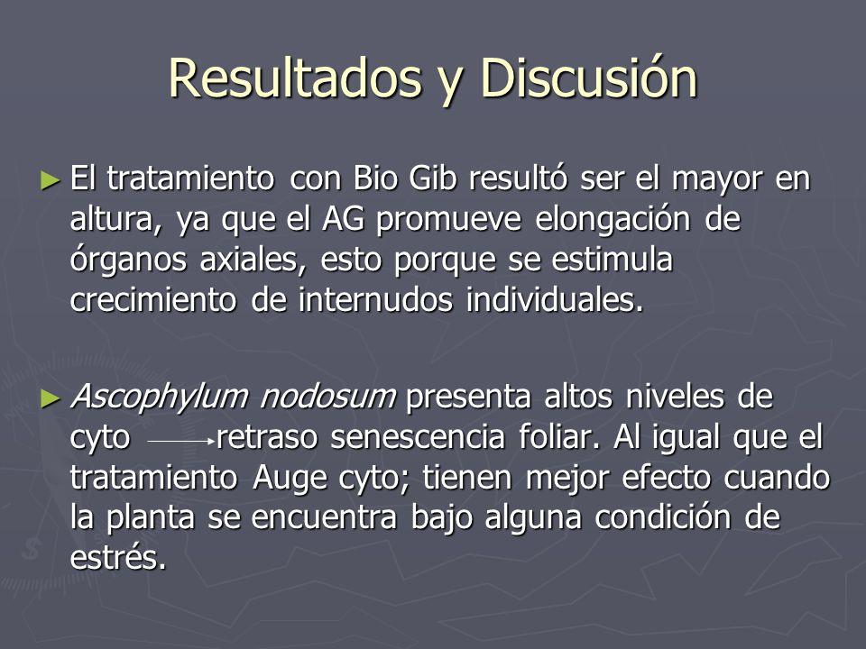 Resultados y Discusión El tratamiento con Bio Gib resultó ser el mayor en altura, ya que el AG promueve elongación de órganos axiales, esto porque se