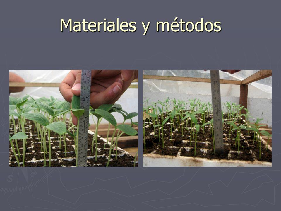 Tratamientos: Tratamientos: - Auge cyto (0,38ml/L) - Bio plant (1,25 ml/L) -Eco-hum (4,38ml/L) -Hormovitt (0,94ml/L) -Indagro F (5ml/L) - Algas (1,25ml/L) - Bio Gib (0,2025g/L) -Testigo