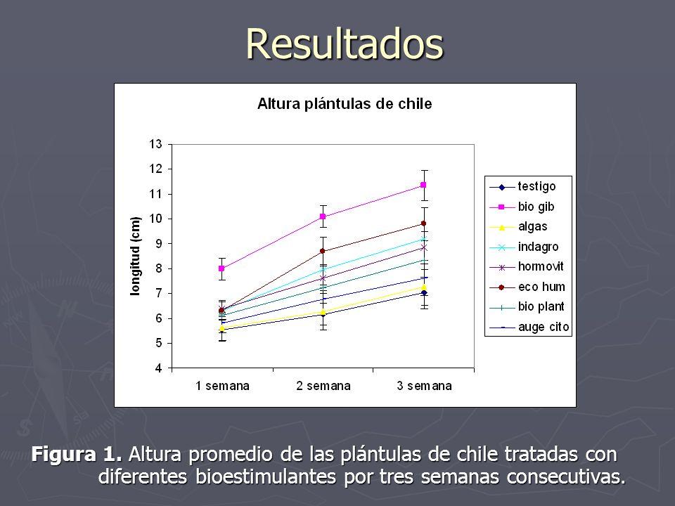 Resultados Figura 1. Altura promedio de las plántulas de chile tratadas con diferentes bioestimulantes por tres semanas consecutivas.