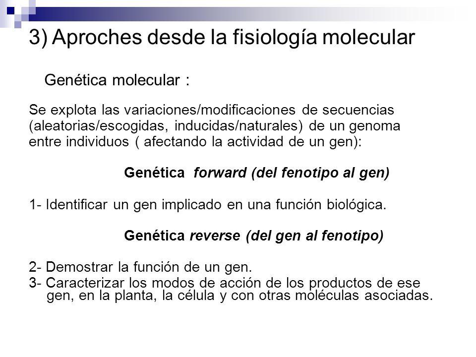 Genética molecular : Se explota las variaciones/modificaciones de secuencias (aleatorias/escogidas, inducidas/naturales) de un genoma entre individuos