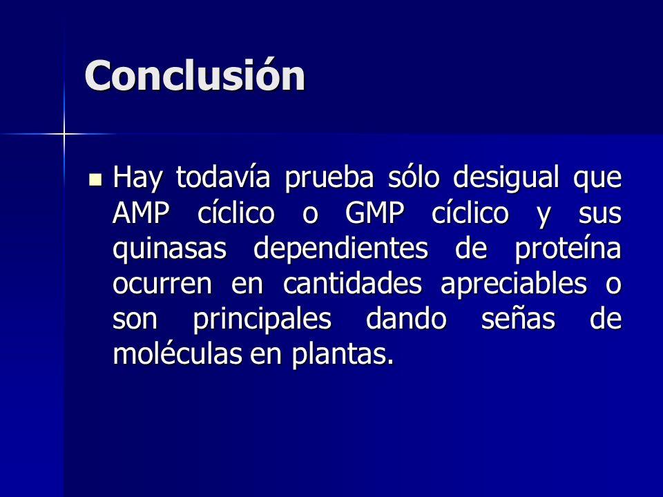 Conclusión Hay todavía prueba sólo desigual que AMP cíclico o GMP cíclico y sus quinasas dependientes de proteína ocurren en cantidades apreciables o