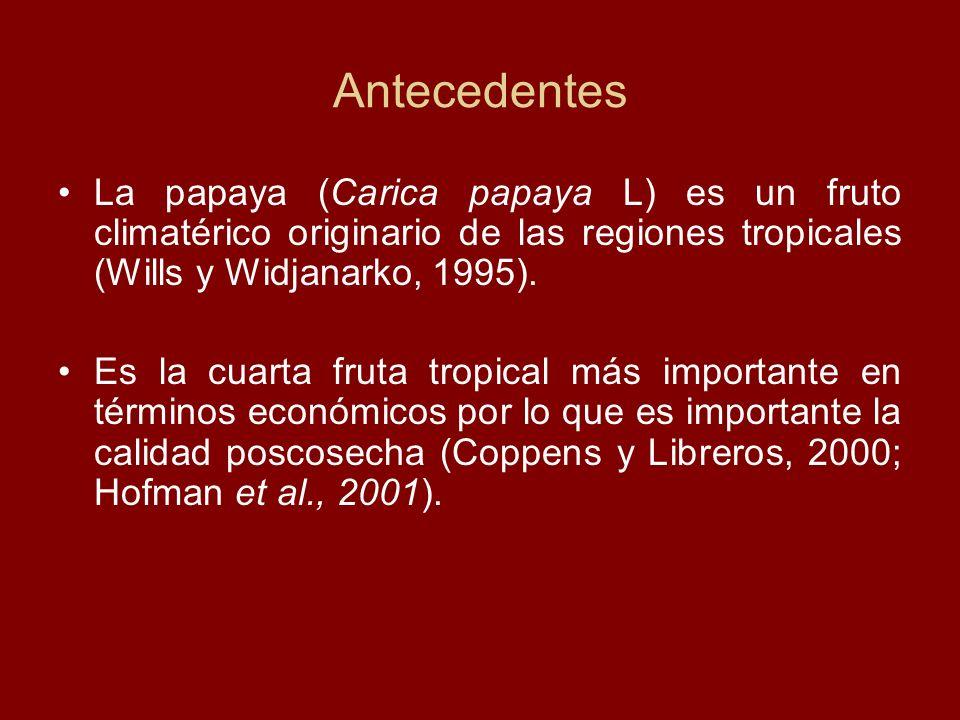 Antecedentes La papaya (Carica papaya L) es un fruto climatérico originario de las regiones tropicales (Wills y Widjanarko, 1995). Es la cuarta fruta