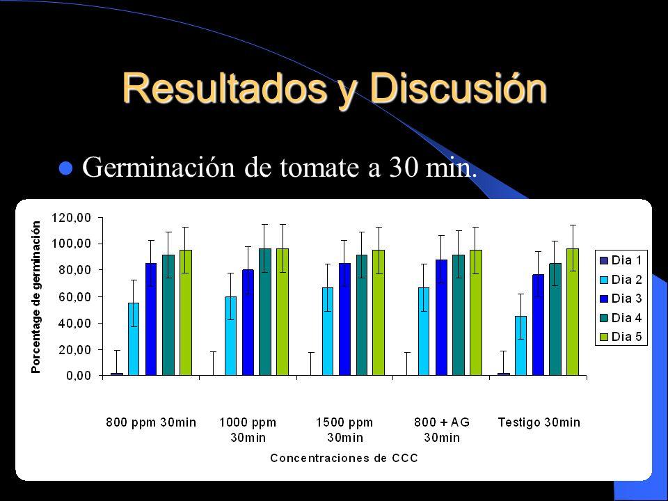 Resultados y Discusión Germinación de tomate a 30 min.