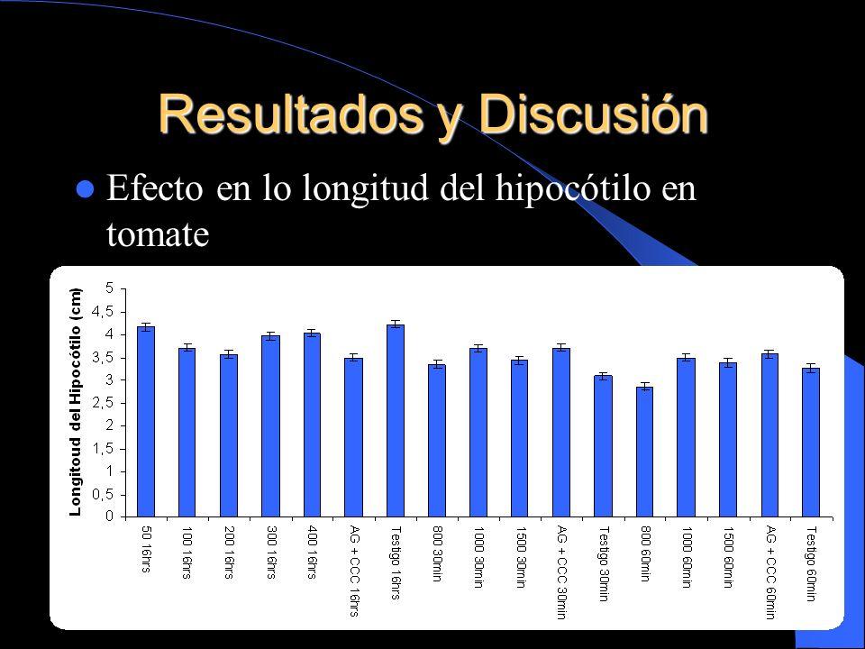 Resultados y Discusión Efecto en lo longitud del hipocótilo en tomate