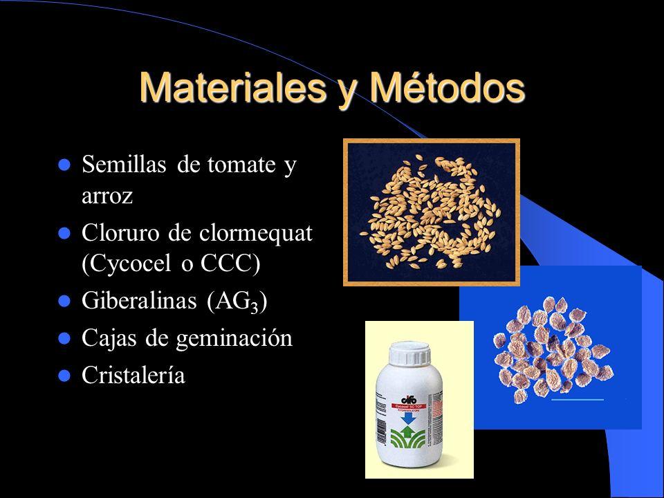 Materiales y Métodos Semillas de tomate y arroz Cloruro de clormequat (Cycocel o CCC) Giberalinas (AG 3 ) Cajas de geminación Cristalería