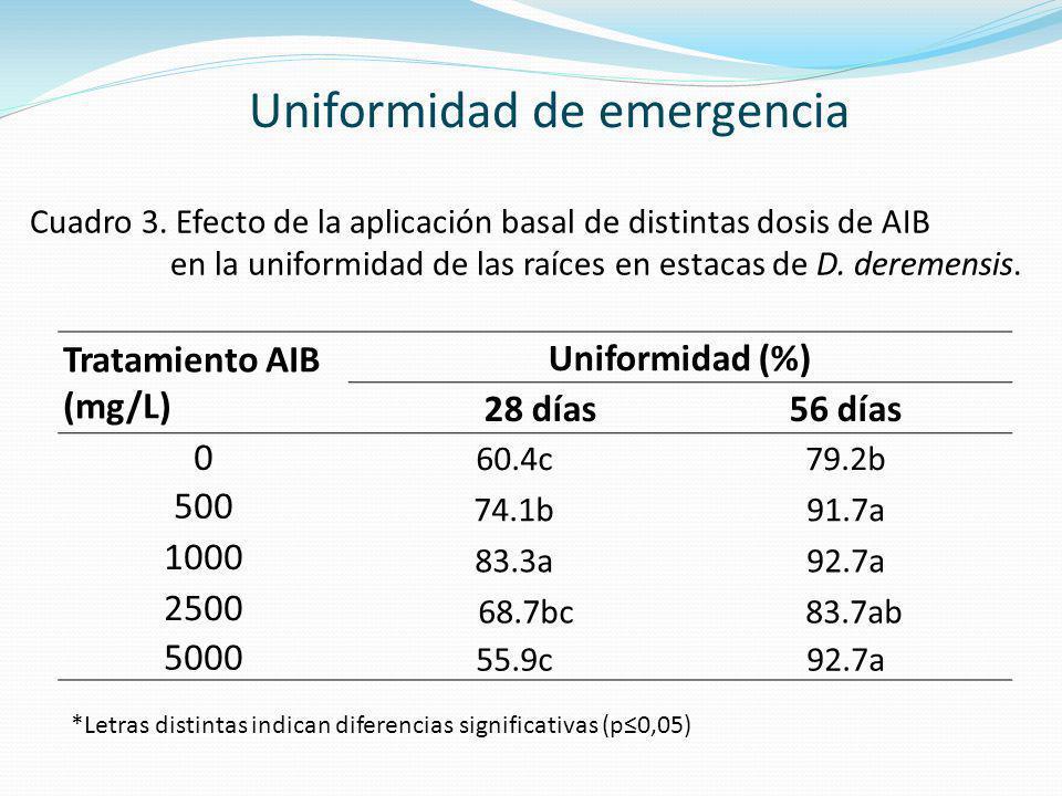 Tratamiento AIB (mg/L) Uniformidad (%) 28 días56 días 0 60.4c79.2b 500 74.1b91.7a 1000 83.3a92.7a 2500 68.7bc 83.7ab 5000 55.9c92.7a *Letras distintas