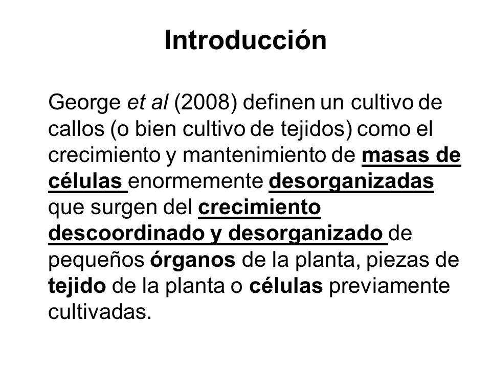 Mi protocolo Utilizar hipocótilos como tejido de origen.