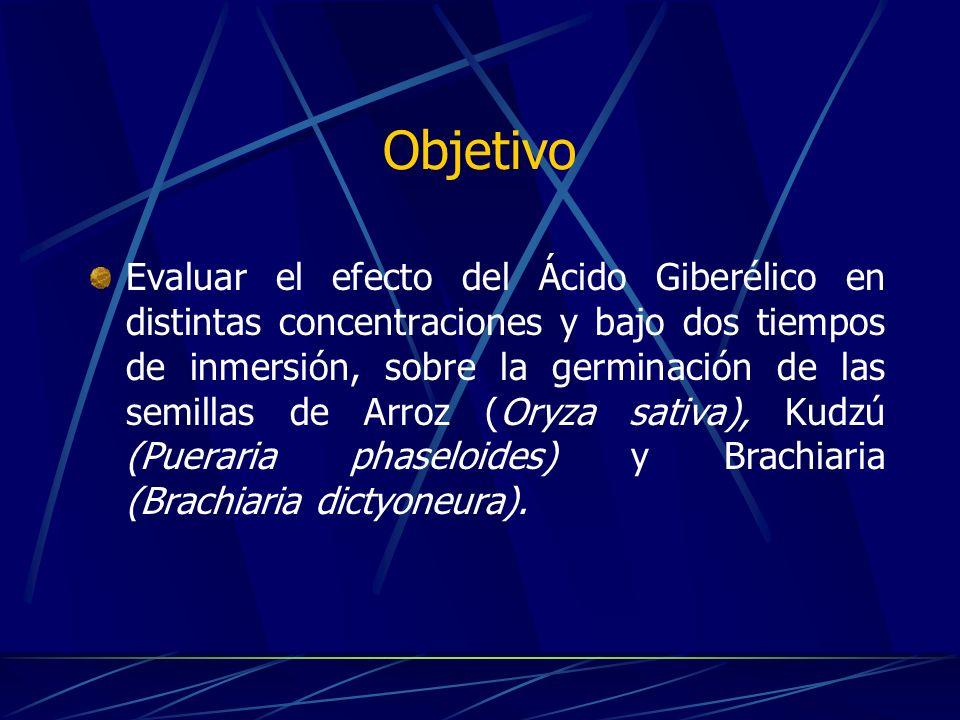 Procedimiento Se separaron 8 grupos de 100 semillas de Arroz, Kudzú y Brachiaria; a cada grupo se le aplicó uno de los siguientes tratamientos (se realizaron dos repeticiones): Cuadro 1.