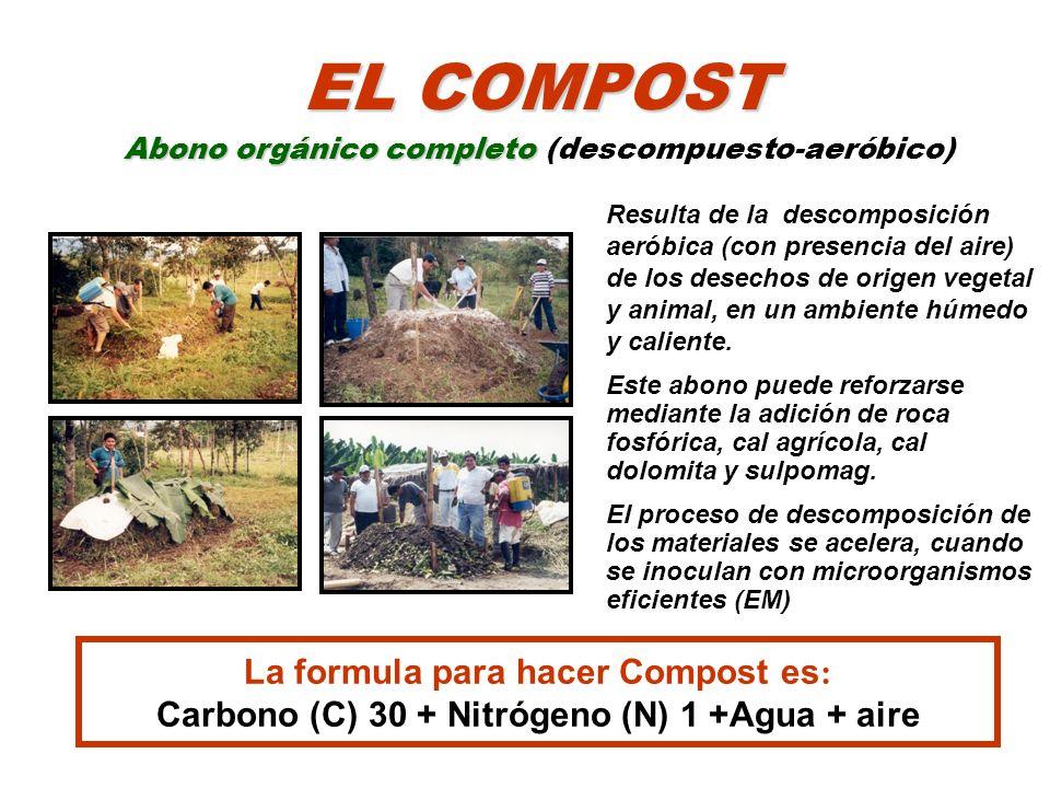 Resulta de la descomposición aeróbica (con presencia del aire) de los desechos de origen vegetal y animal, en un ambiente húmedo y caliente. Este abon