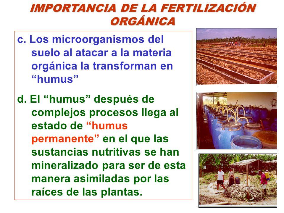 IMPORTANCIA DE LA FERTILIZACIÓN ORGÁNICA c. Los microorganismos del suelo al atacar a la materia orgánica la transforman en humus d. El humus después