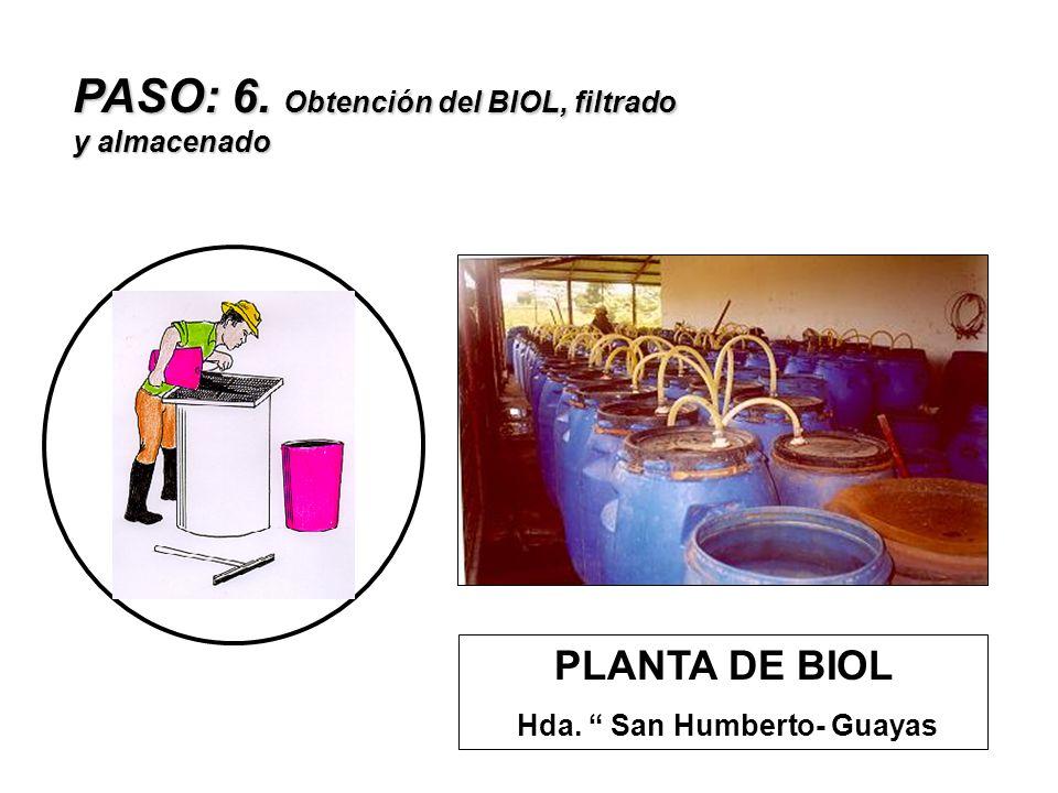PASO: 6. Obtención del BIOL, filtrado y almacenado PLANTA DE BIOL Hda. San Humberto- Guayas