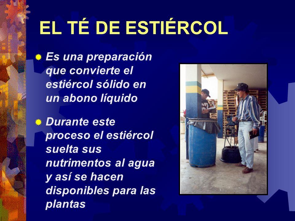EL TÉ DE ESTIÉRCOL Es una preparación que convierte el estiércol sólido en un abono líquido Durante este proceso el estiércol suelta sus nutrimentos a