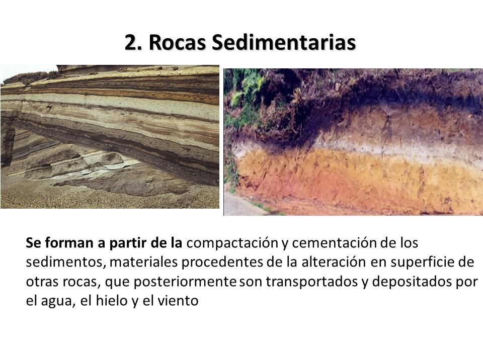 2. Rocas Sedimentarias Se forman a partir de la compactación y cementación de los sedimentos, materiales procedentes de la alteración en superficie de