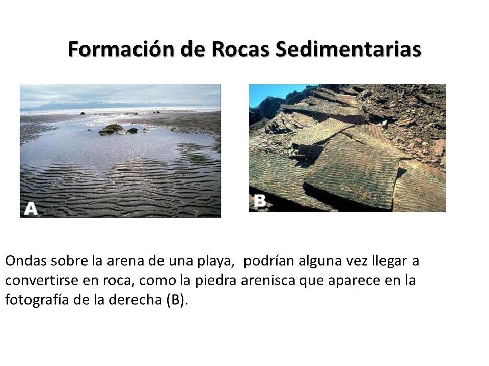 Formación de Rocas Sedimentarias Ondas sobre la arena de una playa, podrían alguna vez llegar a convertirse en roca, como la piedra arenisca que apare